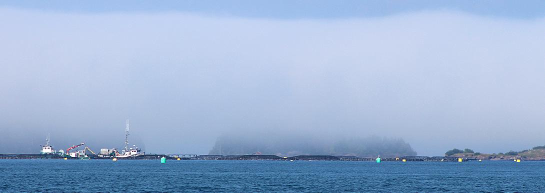 Marine Navigation Buoys Aqua Site Marking Channels Ports Harbors Banner